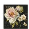Lisa Audit Marche de Fleurs on Black Canvas Print