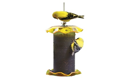 Birds Choice FF116A 1 Quart Forever Nyjer Feeder - Yellow (Goods Pet Supplies Bird Supplies) photo