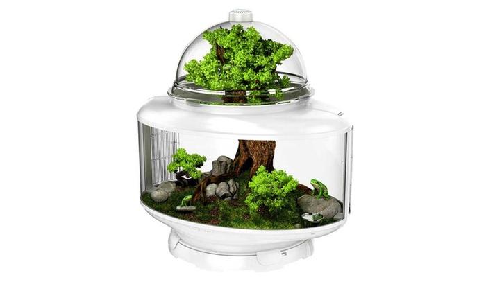 Biobubble Terrarium Reptile Habitat 24 X 15 25 X 25 Groupon