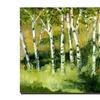 Michelle Calkins Birch Trees Canvas Print 24 x 24