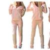 Women Tracksuit Hoodies Sweatshirt Pants Sets Sport Suit