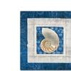 Belinda Aldrich Sea Shell II on Blue Canvas Print