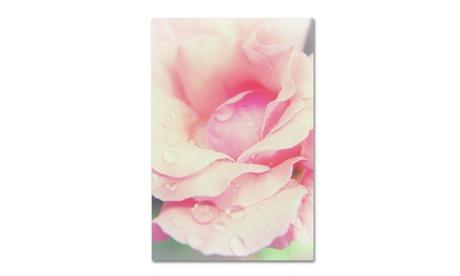 PIPA Fine Art 'Softened Rose' Canvas Art 149c0887-4a01-41ac-b6a7-91f5360b7fda
