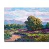 David Lloyd Glover California Hills Canvas Print
