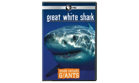 Inside Nature's Giants: Great White Sharks DVD 0908e2ac-f69e-420b-88f5-533b64bff556