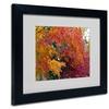 Kurt Shaffer 'Autumn Explosion' Matted Black Framed Art