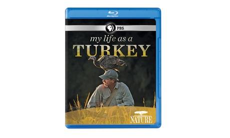 NATURE: My Life as a Turkey Blu-ray 39dca349-8e02-4ca0-b775-b848ba6cc401