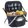Collapsible Insulated Picnic Basket for 2