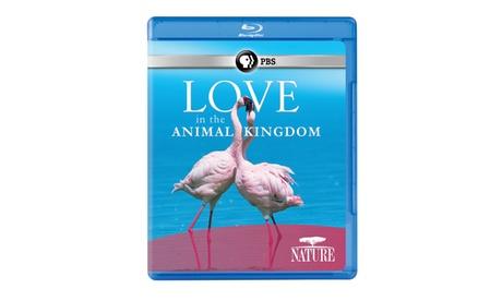 NATURE: Love in the Animal Kingdom Blu-ray a19fc037-5d34-47f6-8f09-7a1aeb79e520