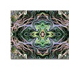 Kathie McCurdy Kaleiodoscope Canvas Print