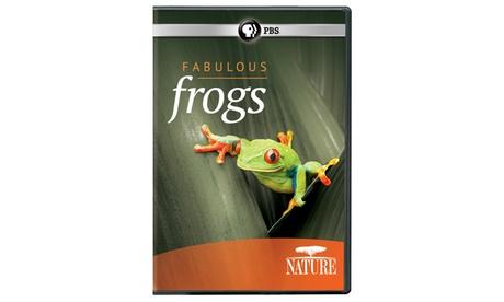 NATURE: Fabulous Frogs DVD 9f97caf9-5c8e-4e60-839e-5eb7988ea670