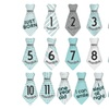 16 Baby Monthly Necktie Onesie Stickers