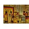 Lois Bryan Vintage Medicines Canvas Print