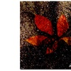 Miguel Paredes Red Leaves III Canvas Print 18 x 18