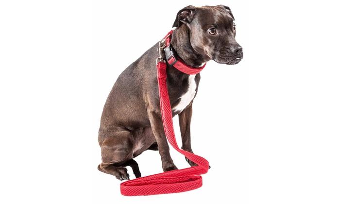 Up To 54 Off On Pet Life Aero Mesh 360 Degr Groupon Goods