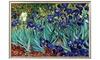 Groupon Goods: Irises, Saint-Remy, c.1889 by Vincent van Gogh