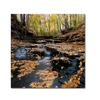 Kurt Shaffer Lakeview Autumn Falls Canvas Print