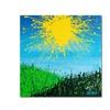 Roderick Stevens Sun Valley Canvas Print