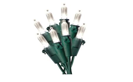 Celebrations 40754-71 Mini LED Light Reel, Cool White 294d065c-832d-430d-a8c1-93484c74c0ac