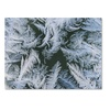 Kurt Shaffer Frost at Zero Degrees Canvas Print