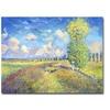 David Lloyd Glover Summer Field of Poppies Canvas Print