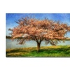 Lois Bryan Cherry Tree Canvas Print