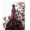 Kathy Yates Eiffel With Tree Canvas Print