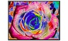 Groupon Goods: Rainbow-Colored Rose by Rich LaPenna