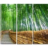 Path to Bamboo Forest - Landscape Photo Metal Wall Art