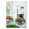 David Lloyd Glover Window Boxes Canvas Print