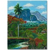 Douglas Coneccion Natural Canvas Print 26 x 32