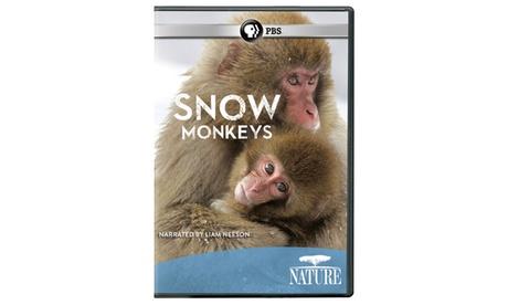 NATURE: Snow Monkeys DVD 8eba2610-05a2-426c-a917-0aa4dd9e8e57