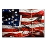 Roderick Stevens American Wrap Canvas Print