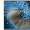 Waterdance by Ursula Abresch