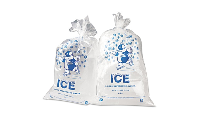 Home Depot Mil Zip Top Plastic Bags