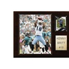 "NFL 12""x15"" Kenny Britt Tennessee Titans Player Plaque"