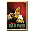 Cordial Campari Liquor Canvas Print