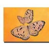 Rickey Lewis Two Butterflies Canvas Print 14 x 19