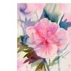 Shelia Golden Pink Hibiscus Bloom Canvas Print
