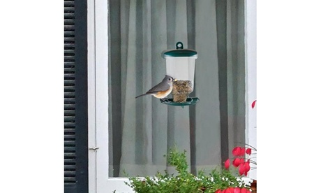 Window Bird Feeder (Goods For The Home Patio & Garden Bird Feeders & Food) photo