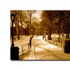 Ariane Moshayedi 'Winter Playground' Canvas Art