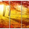 Autumnal Park - Landscape Photography Metal Wall Art