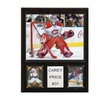 """NHL 12""""x15"""" Carey Price Montreal Canadiens Player Plaque"""