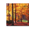 David Lloyd Glover Autumn Serenity Canvas Print