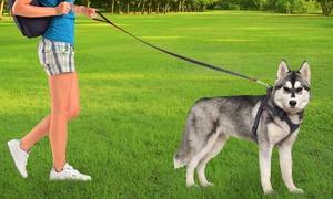 Petmaker Dog Harness and Leash Set