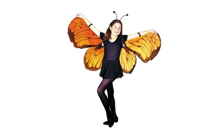 Costumes for All Occasions MR153001 Wings Childs Butterfly b2e3c62b-045a-4812-ba7c-6dd6a3969dd9