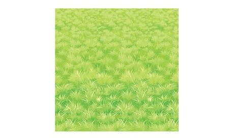 Beistle Party Decoration Meadow Backdrop 4' x 30' - 6 Pack (1/Pkg) 20a2e371-6279-44a0-803c-e81ca54bd3f3