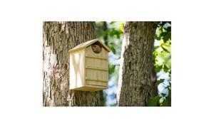Screech Owl House Nesting Box