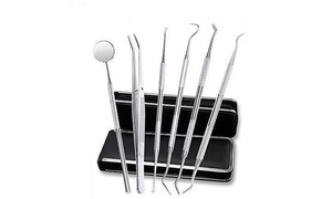 Stainless Steel Dental Tools Set (6-Piece)