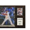 "MLB 12""x15"" Carlos Ruiz Philadelphia Phillies Player Plaque"